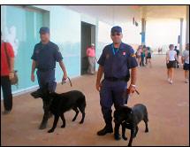 perros policia expo2008 - ¡¡Un gran trabajo, chicos…!!