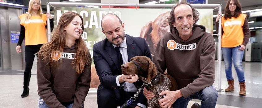 el refugio - El Refugio abre su centro a todas las mascotas 'madrileñas'