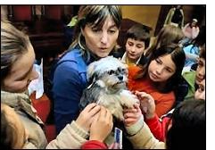 refugio cambados - Cambados: 11 años ofreciendo un hogar a perros abandonados