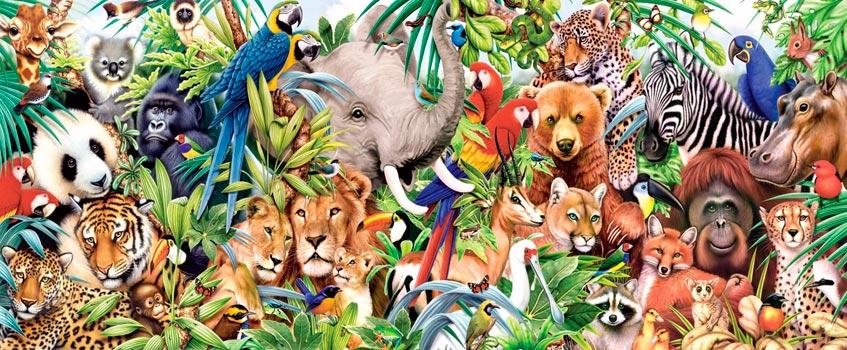 animales - Día Mundial: Celebrando la 'vida animal' en todas sus formas